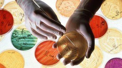 'Golden age' of antibiotics 'set to end' | Complex Insight  - Understanding our world | Scoop.it