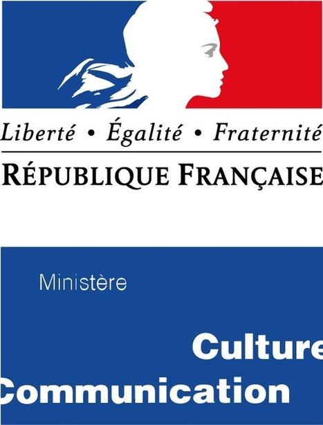 Ministère de la Culture : première évaluation de PNB | Lecture, ressources et services numériques en bibliothèque | Scoop.it