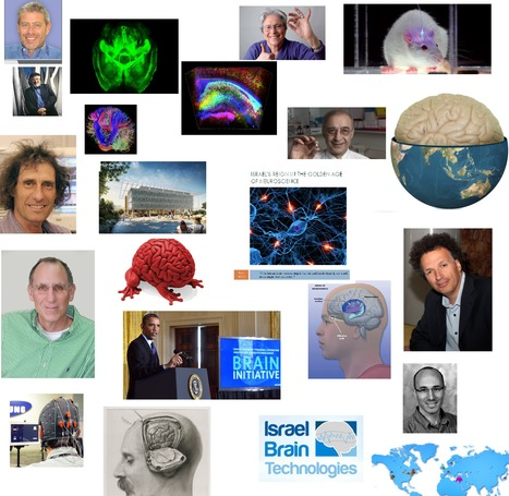 Israel's Reign in the Golden Age of Neuroscience | The Golden Age of Neuroscience | Scoop.it