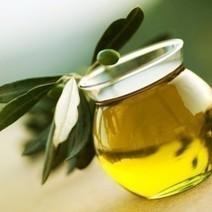 Progetto HO.RE.CA nel Regno Unito: in arrivo l'olio ... - ProdottiTipici.it   Prodotti Tipici   Scoop.it