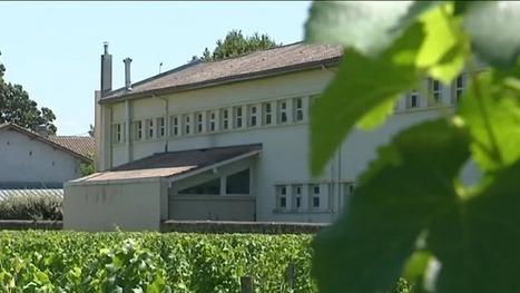 Phytos/Gironde. Un rapport recommande de protéger les enfants de l'école de Preignac | Les colocs du jardin | Scoop.it