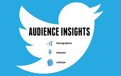 #Twitter lance Audience Insights, un nouveau rapport pour mieux connaître son audience ! | MOOST FORMATION | Scoop.it