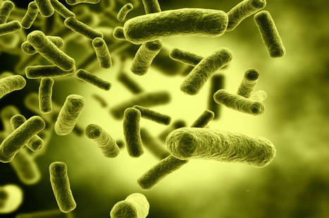 £4.5M Newton Fund to tackle antimicrobial resistance | ESRC press coverage | Scoop.it