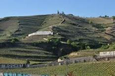 Celebrating the National Protected Status obtained for the Hermitage hill | Vitabella Wine Daily Gossip | Scoop.it