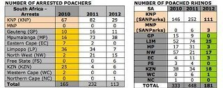 RHINO POACHING STATS! 181 DEAD | What's Happening to Africa's Rhino? | Scoop.it