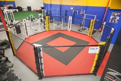 Best MMA And Martial Arts Studios In Minnesota - CBS Minnesota | Choosing the Best MMA Fitness Center in Lawrenceville | Scoop.it