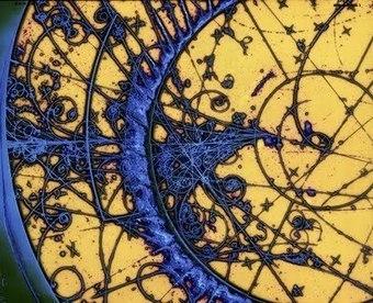 Popinga: Il neutrino di Updike | Extrafalarias | Scoop.it