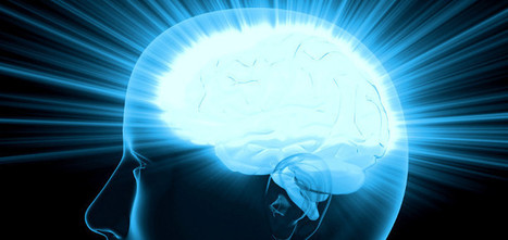 Cannabinoids May Protect Brain From Stress-Related Impairments - Leaf Science | Cannabinoid Issues | Scoop.it