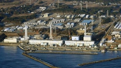Fukushima Emergency what can we do?: Is the UN report underplaying Fukushima?: IPPNW issues scathing critique | Sustain Our Earth | Scoop.it