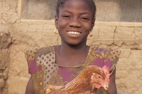 How Goats and Chickens Can Help End Child Marriage - TakePart | project tanzania | Scoop.it