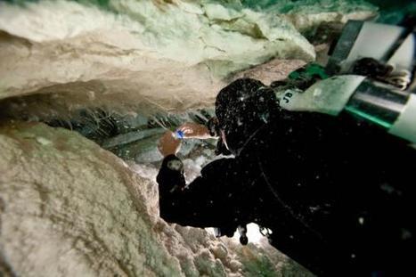Strange alien Nullarbor slime lives on oxidizing ammonia in salty cave water | Amazing Science | Scoop.it