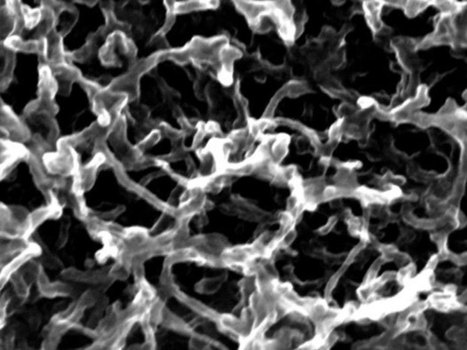 Nanotubes and Graphene Foam Make Hybrid Energy Storage Device | Research | Scoop.it