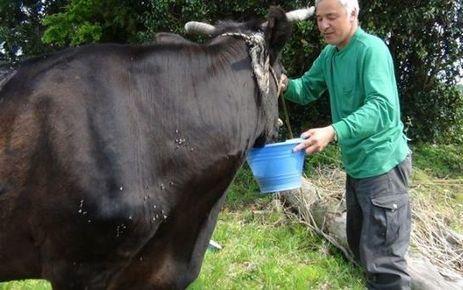 Nucléaire : l'ermite de Fukushima prédit un accident au Japon...  ou en France | Nature Animals humankind | Scoop.it