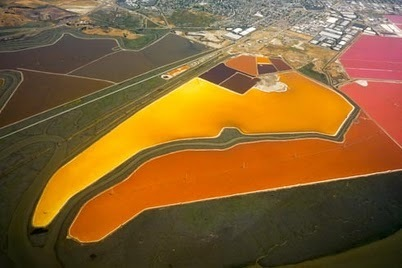 The never ending modern art show of the south bay's salt ponds | MicrobiologyBytes | Scoop.it