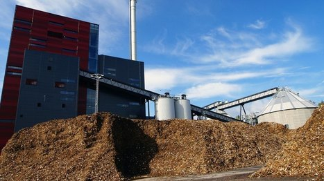 What a 20-year biomass battle tells us about environmental justice policy | sustainablity | Scoop.it