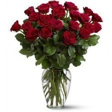 Twice as impressive as a dozen red roses. Send these and that special someone will be twice as thrilled.Address:- 1959 Upper Water Street, Suite 1700, Tower 1 Halifax Nova Scotia B3J 3N2  Phone:- 9... | Waterfront Florist | Scoop.it