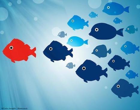 Conduite du changement : ce que change la digitalisation   change management   Scoop.it