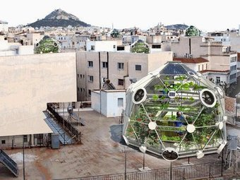 Rooftop Fish Farm Ups the Ante for Urban Agriculture | BFreeNews | Vertical Farm - Food Factory | Scoop.it