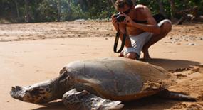 Ecovolontariat, wwoof, chantier nature. Bénévolat pour l'environnement - voyage pour ecovolontaire - préservation des espèces en danger | Ecovolontariat | Scoop.it
