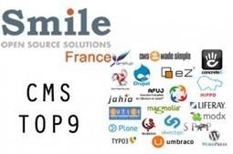 Choisir son CMS en fonction des besoins de son projet. | newsphil-blog.com | Webdesign | Scoop.it