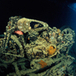 Dive the Thistlegorm an Iconic Wreck in the Red Sea - Book Your Dive | All about water, the oceans, environmental issues | Scoop.it
