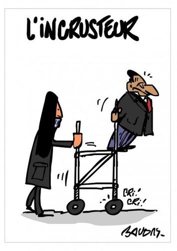 L'incrusteur | Baie d'humour | Scoop.it