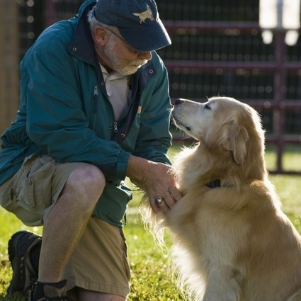 Pets And Estate Planning | Estate Planning New Mexico | Scoop.it