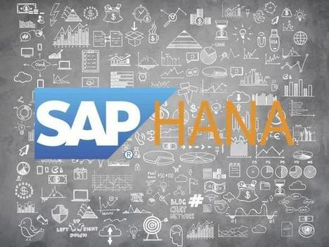 SAP's HANA will lose the big data war without open source, as proven by 21 new security flaws - TechRepublic | JANUA - Identity Management & Open Source | Scoop.it