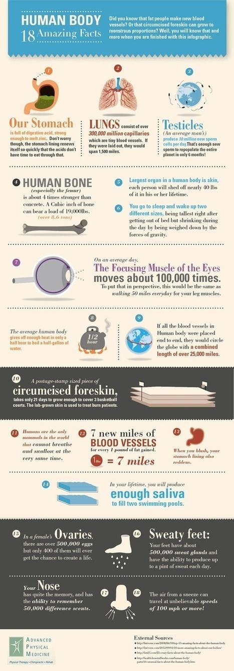 Infographics | Top 5 Infographics | Scoop.it
