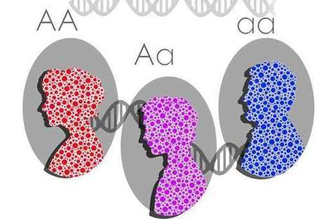 Scientists discover important genetic source of human diversity | Aux origines | Scoop.it
