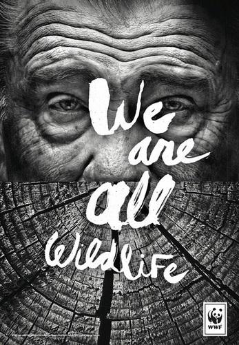 Pour WWF, nous sommes tous des animaux | Non profit and fundraising | Scoop.it