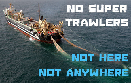 NO Super Trawlers.  Not Here.  Not Anywhere VIDEO | OUR OCEANS NEED US | Scoop.it