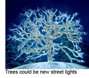 Glowing bio-LED trees could replace street lamps | Electric Bicycles Blog | Spencer Ivy | Street installations with attitude | Scoop.it