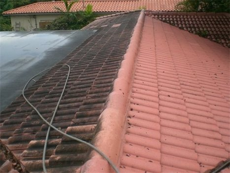 Points to consider when cleaning the Roof with tacomaroofcare - posted by Miguel T. Jacobson at RedPymes | joseawilliams | Scoop.it