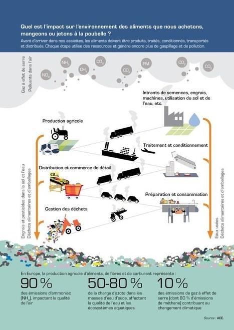 De la production aux déchets : le système alimentaire | tendances food | Scoop.it