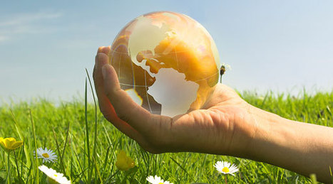 How to Make your SME more Environmentally Sustainable | sustainability | Scoop.it