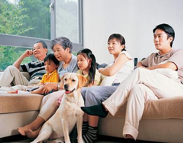 Discovery Noticias: Grupo de pediatras alerta de que los bebés no deben ver la televisión | Familia 2.0 | Scoop.it