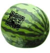 QR codes used in pilot program for melon tracking - QR Code Press | Using QR Codes | Scoop.it