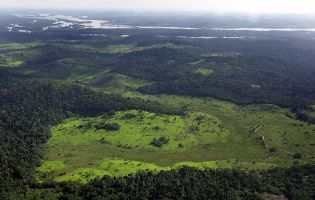 Brazil's Amazon deforestation has soared, satellite pictures suggest | Sustain Our Earth | Scoop.it