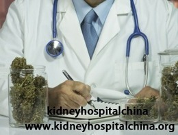 How to Shrink the Cysts Naturally in PKD | kidney disease | Scoop.it
