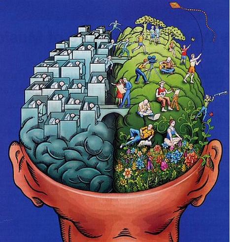 Incidence des livres sur le développement du cerveau à l'âge de 4 ans | Trucs de bibliothécaires | Scoop.it