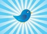 12 tips om je zichtbaarheid te vergroten op Twitter [infographic] - Frankwatching | Carrière gericht netwerken en online profilering | Scoop.it