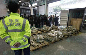 With Hong Kong seizures and Tsavo poachings, are we staring at a catastrophe for elephants? | Animals R Us | Scoop.it