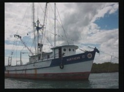OCEANA sells $800,000 trawler to Placencia Coop for $1 | Belize in Social Media | Scoop.it