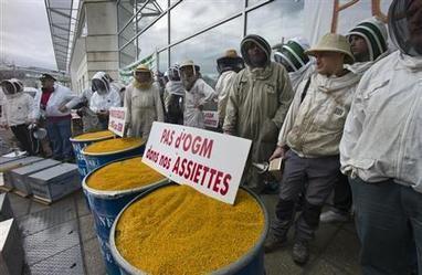 U.S. tax dollars promote Monsanto's GMO crops overseas: report | Reuters | The Peoples News | Scoop.it