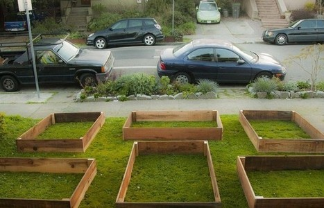 Day 1: 'Hey, What's The Neighbor Doing To His Lawn?' Day 60: 'OMG!!' | Social Media News because People are well, Social | Scoop.it