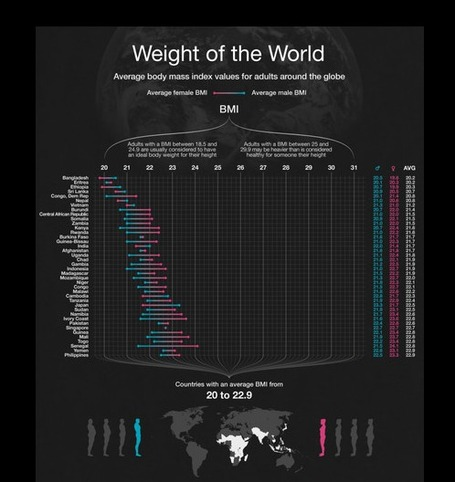 "Visualizing The ""Globesity"" Problem 