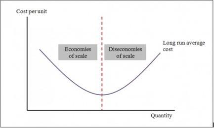Economies and Diseconomies of Scale at PepsiCo   Bathgate Academy Politics and Economics   Scoop.it