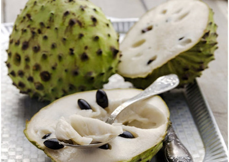 13 Benefits Of Cherimoya Fruit And Its Nutritional Value   Health Beckon   Scoop.it