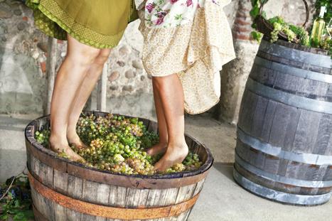 Le moment ou le solide devient liquide - Les secrets du foulage | Le Vin et + encore | Scoop.it
